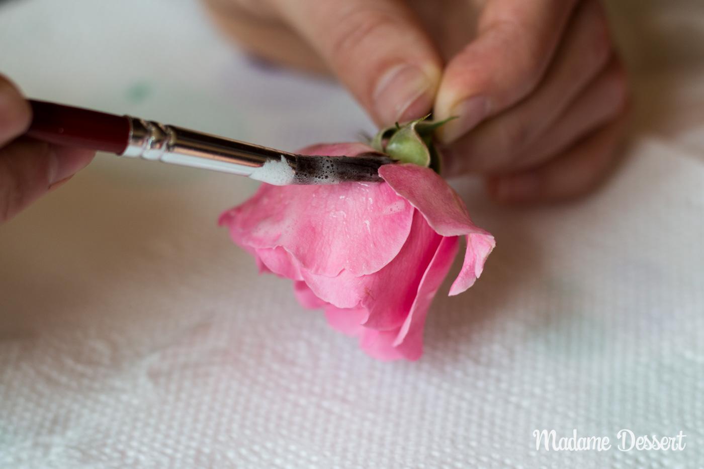 Kandierte Rosen | Madame Dessert