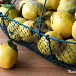 Apfel- & Birnenquitten –Quittensorten auf dem Prüfstand