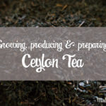 [English] All you need to know about the growing, producing and preparing of Ceylon Tea | Sri Lanka