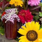 Fruchtige Herbstleckereien –Zwetschgen- oder Pflaumensirup selbermachen